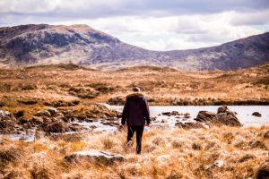 """Ein Wochenendausflug in die Highlands mit """"Der Pfau"""" von Isabel Bogdan"""